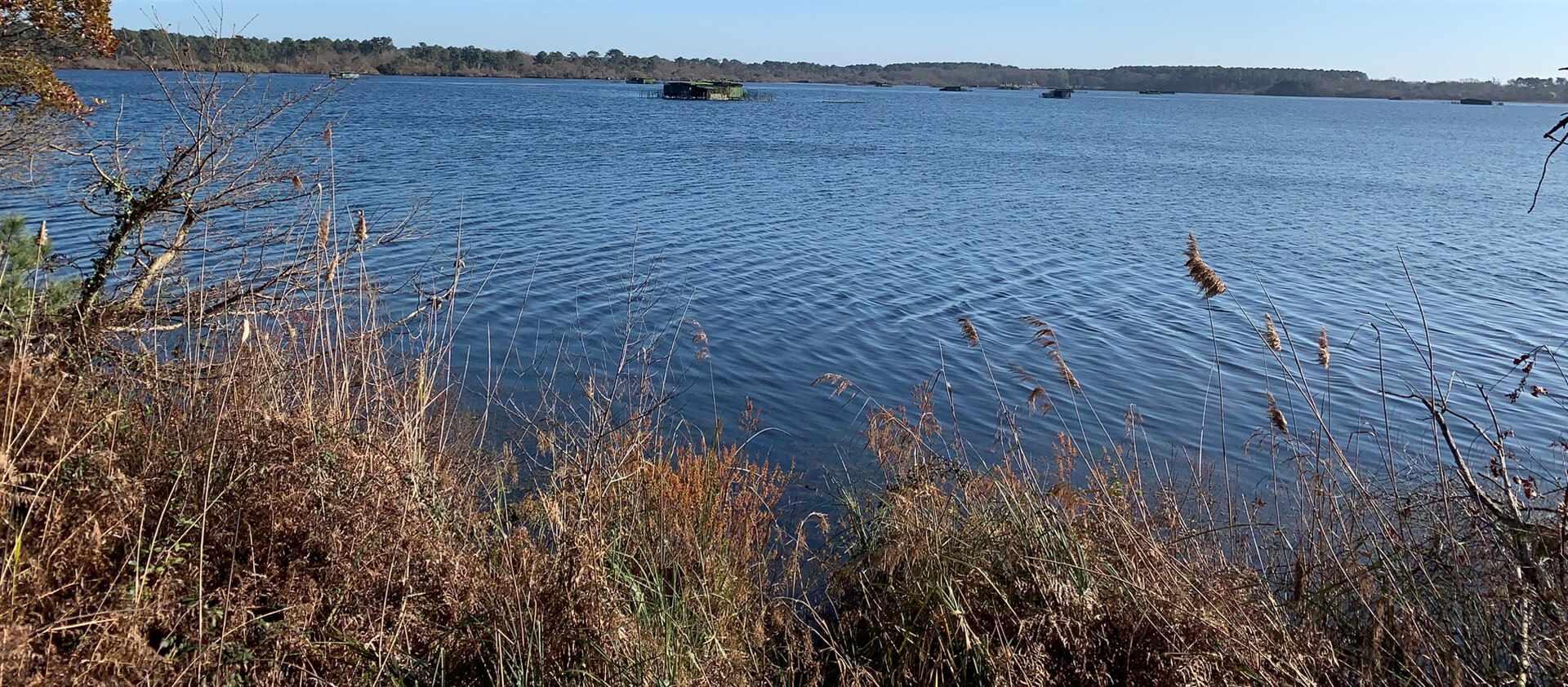 Piste cyclable en bordure de lac dans les Landes